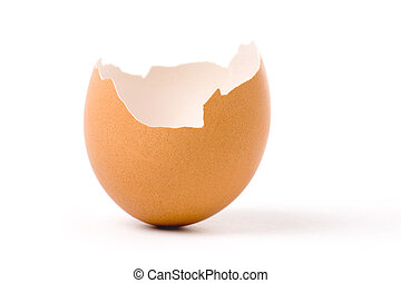eggshell - an eggshell with white background