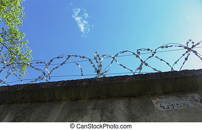 Barbed wire 1 - Razor wire above a wall