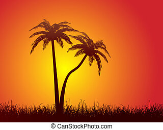 palm trees - Silhouettes of palm trees against a sunset sky