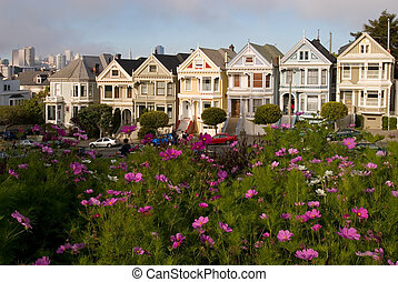 Flowers and Alamo Sq Victorian Houses, San Francisco,...