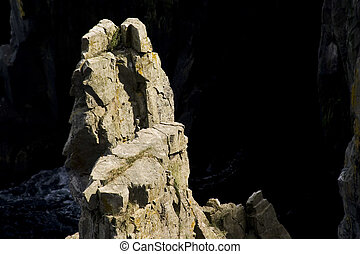 Sea stack - Top of a sea stack starkely contrasted by the...