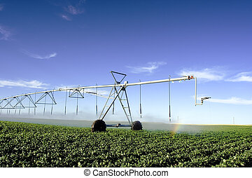 Irrigation - Pivot irrigating a field