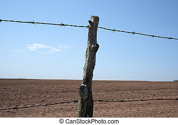 Barbed wire farm fence