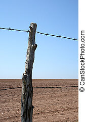 Old barbed wire farm fence