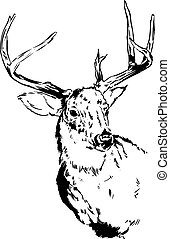 Deer / Reindeer - An original pen and ink illustration of a...