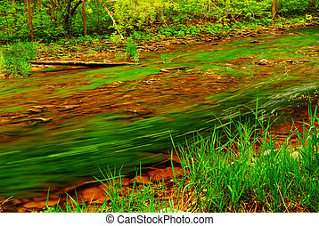 Forest river - Small river with rocky bottom flowing...