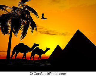 Desert sunset egypt - Illustration of Camels walking in...