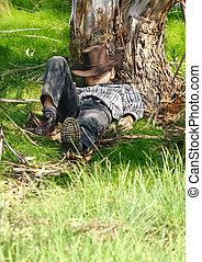 Asleep under a gum tree - A child sleeps under a gum tree in...