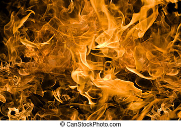 burning background - Campfire flames bright firey orange and...