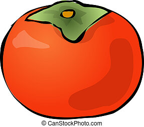Persimmon fruit, hand drawn colored lineart illustration