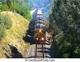 Oncoming Train - An Oncoming Train Travels through a...
