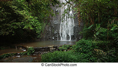 Serenity - A secluded tropic waterfall
