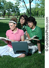 Friends Studying - Friends outdoors in the park studying for...
