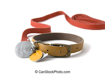 Collar with tags - Leather dog colar with registration tags...