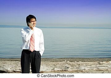 Businessman on the phone - A businessman talking on the cell...