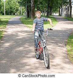 Boy on a bicycle in a summer park