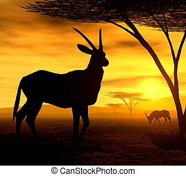 The Antelope - Illustration of an oryx antelope