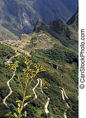 Machu Picchu- Peru - View of the UNESCO World Heritage site...