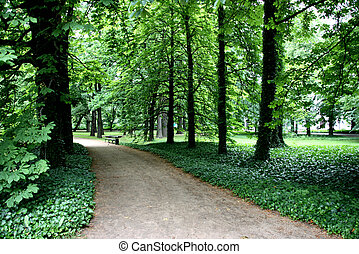 Park path and bench - Royal Park of Lazienki in Warsaw....