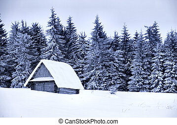 Snow covered cottage - Winter in the mountains. Small wooden...