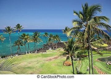 Hawaii Kona Beach - Azure Hawaiian Snorkeling Beach on Kona...