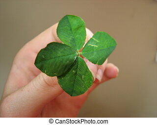 Good Luck!!! - A four leaf clover in someone\\\'s hand