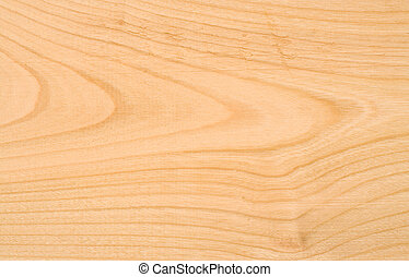Beech wood texture - Unpolished beech wood texture without...