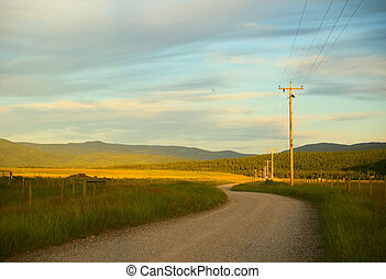 Country Road - A dirt road in a rural area