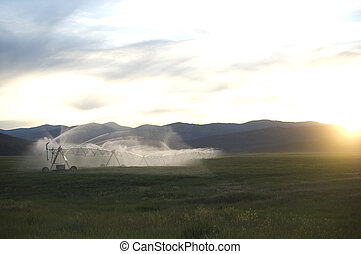 Pivot Sprinkler - A pivot sprinkler waters a straw field on...