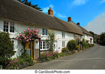 Cottages in Abbotsbury - Row of pretty English traditional...