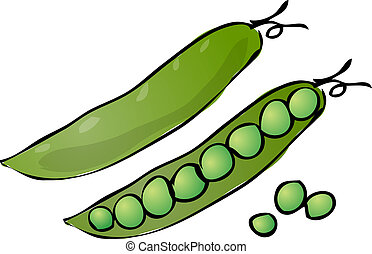 Peas - Sketch of peas in a pod Hand-drawn lineart look...