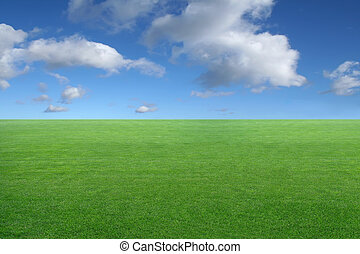 landscape - green grass on blue sky background - new...