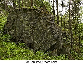 Moss-covered Boulder - A huge moss-covered boulder in the...