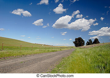One Lane Gravel Road - One Land Gravel Road Beneath Stark...