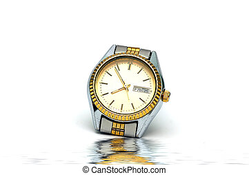Wrist Watch - A Wrist watch isolated against a white...