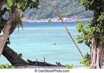 island tropical beach - Ko-Surin island tropical beach, a...
