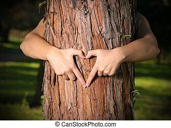 árbol, amante