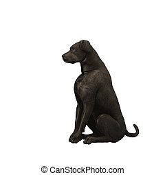 Black Labrador Retriever - 01 - Black Labrador Retriever....