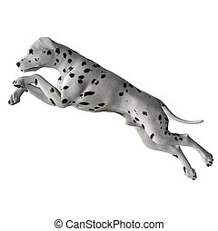 Dalmatian - 02 - Dalmatian Leaping into action, Attacking to...