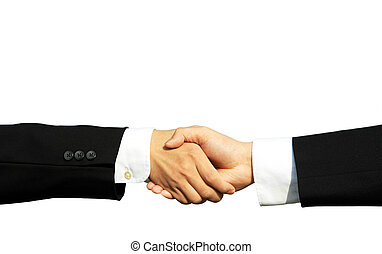 Business partners - Two businessmen shaking hands in...