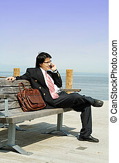 Businessman on the phone - Businessman talking on the cell...