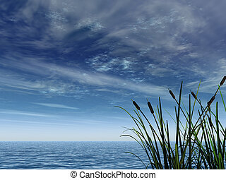 reed - water landscape and reed - 3d illustration