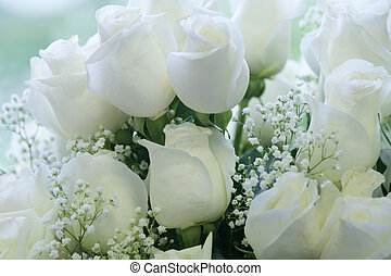 Bouquet of elegant white - A beautiful bouquet of soft white...