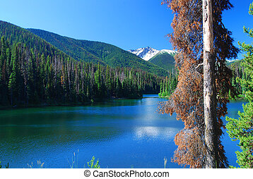 bc outdoors - glazier lake in the mountains