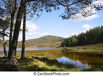 Auchintaple Loch 2 - A peaceful inland Scottish Loch in...
