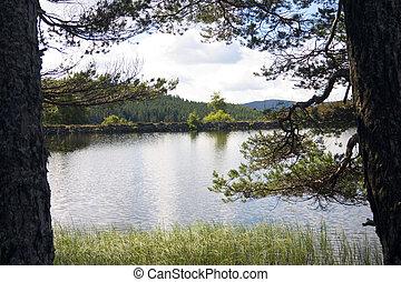 Auchintaple Loch 4 - A peaceful inland Scottish Loch in...