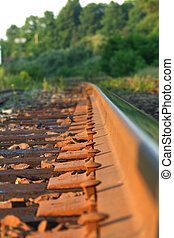 Rail Spikes - Spikes by a rail, semi-macro