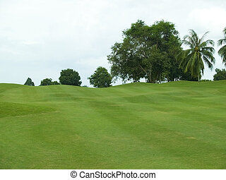 Undulating fairway - Undulating, uphill fairway of...