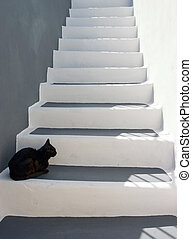 Black cat on the stairs - Black cat sitting on the stairs