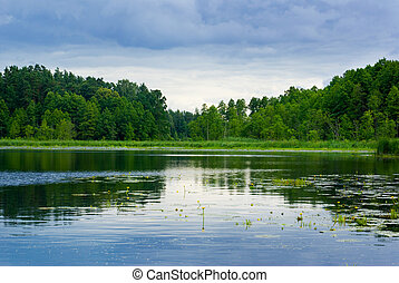 Lake and forest view - Peaceful lake view - bright interval...